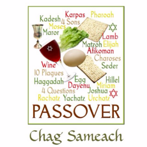 Passover Planning Ideas and Supplies